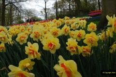 2012-04-26 Keukenhof Gardens.  (163)163