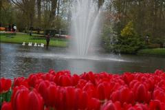 2012-04-26 Keukenhof Gardens.  (166)166