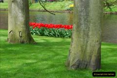 2012-04-26 Keukenhof Gardens.  (171)171