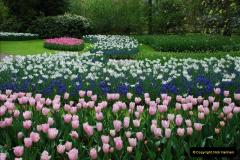 2012-04-26 Keukenhof Gardens.  (174)174
