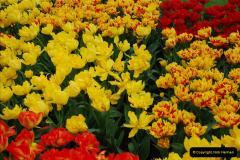 2012-04-26 Keukenhof Gardens.  (177)177
