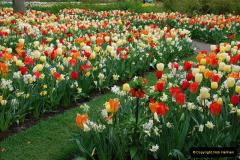 2012-04-26 Keukenhof Gardens.  (178)178