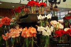 2012-04-26 Keukenhof Gardens.  (181)181