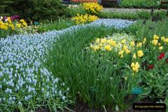 2012-04-26 Keukenhof Gardens.  (189)189