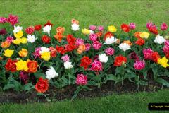 2012-04-26 Keukenhof Gardens.  (190)190