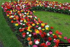 2012-04-26 Keukenhof Gardens.  (191)191
