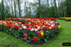 2012-04-26 Keukenhof Gardens.  (192)192