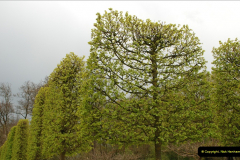 2012-04-26 Keukenhof Gardens.  (199)199