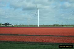 2012-04-26 Keukenhof Gardens.  (3)3