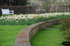 2012-04-26 Keukenhof Gardens.  (37)37