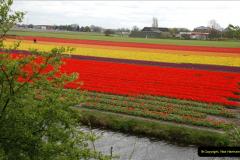 2012-04-26 Keukenhof Gardens.  (39)39