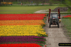 2012-04-26 Keukenhof Gardens.  (40)40