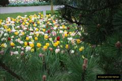 2012-04-26 Keukenhof Gardens.  (44)44