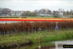 2012-04-26 Keukenhof Gardens.  (52)52