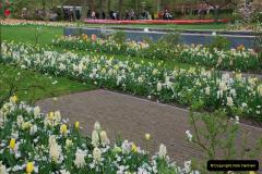2012-04-26 Keukenhof Gardens.  (56)56