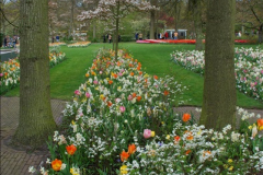2012-04-26 Keukenhof Gardens.  (59)59