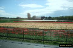 2012-04-26 Keukenhof Gardens.  (6)6