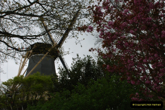 2012-04-26 Keukenhof Gardens.  (69)69