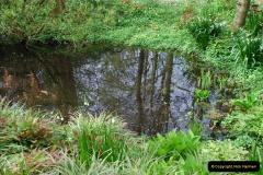 2012-04-26 Keukenhof Gardens.  (72)72