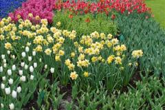 2012-04-26 Keukenhof Gardens.  (73)73