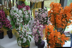 2012-04-26 Keukenhof Gardens.  (99)99