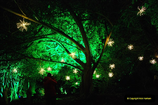 2018-12-12 Kingston Lacy (NT) Christmas lights.  (20)20