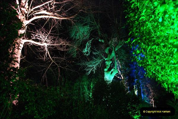 2018-12-12 Kingston Lacy (NT) Christmas lights.  (35)35