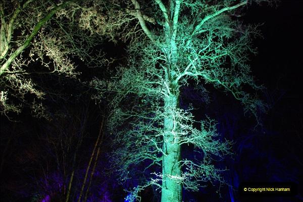 2018-12-12 Kingston Lacy (NT) Christmas lights.  (40)40