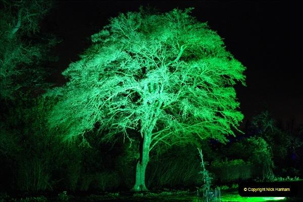 2018-12-12 Kingston Lacy (NT) Christmas lights.  (25)25