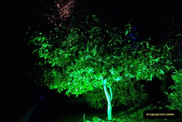 2018-12-12 Kingston Lacy (NT) Christmas lights.  (34)34