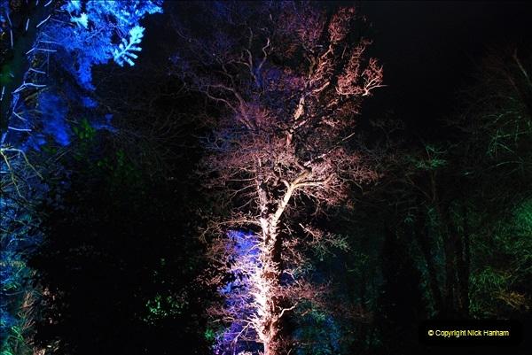 2018-12-12 Kingston Lacy (NT) Christmas lights.  (36)36