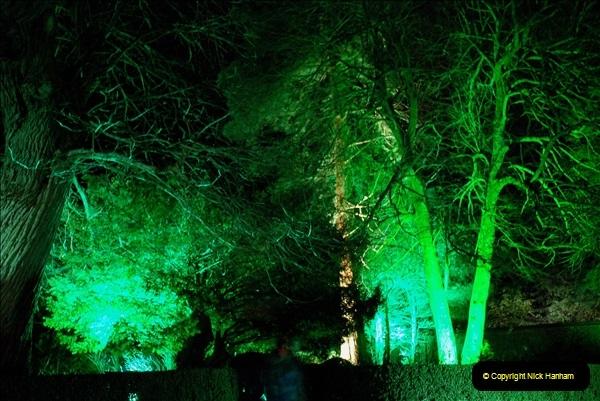 2018-12-12 Kingston Lacy (NT) Christmas lights.  (51)51