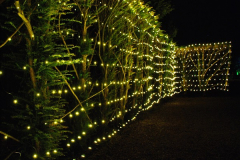 2018-12-12 Kingston Lacy (NT) Christmas lights.  (11)11