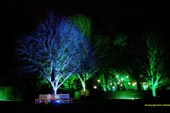 2018-12-12 Kingston Lacy (NT) Christmas lights.  (18)18