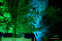 2018-12-12 Kingston Lacy (NT) Christmas lights.  (22)22