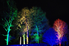 2018-12-12 Kingston Lacy (NT) Christmas lights.  (24)24