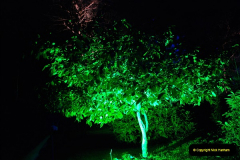 2018-12-12 Kingston Lacy (NT) Christmas lights.  (34)34
