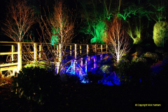 2018-12-12 Kingston Lacy (NT) Christmas lights.  (41)41