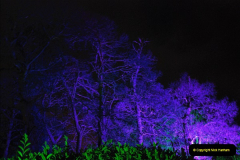2018-12-12 Kingston Lacy (NT) Christmas lights.  (43)43