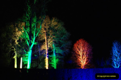 2018-12-12 Kingston Lacy (NT) Christmas lights.  (47)47
