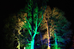 2018-12-12 Kingston Lacy (NT) Christmas lights.  (48)48