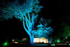 2018-12-12 Kingston Lacy (NT) Christmas lights.  (49)49
