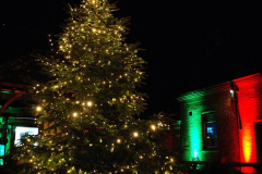 2018-12-12 Kingston Lacy (NT) Christmas lights.  (7)07