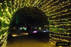2018-12-12 Kingston Lacy (NT) Christmas lights.  (9)09