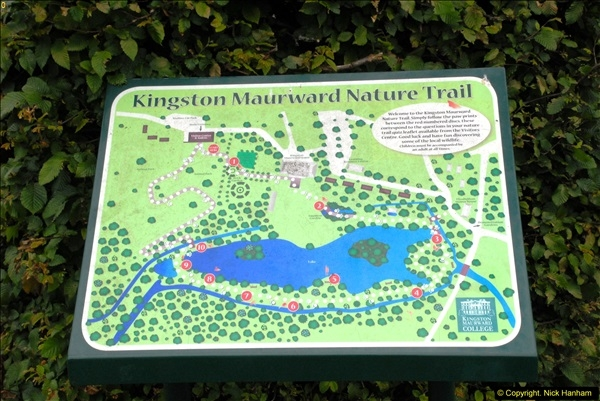 2015-07-15 Kingston Maurward Gardens & Animal Park, Dorchester, Dorset.  (2)002