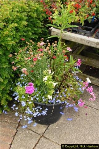 2015-07-15 Kingston Maurward Gardens & Animal Park, Dorchester, Dorset.  (3)003