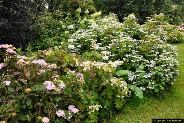 2015-07-15 Kingston Maurward Gardens & Animal Park, Dorchester, Dorset.  (45)045