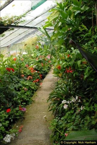 2015-07-15 Kingston Maurward Gardens & Animal Park, Dorchester, Dorset.  (55)055