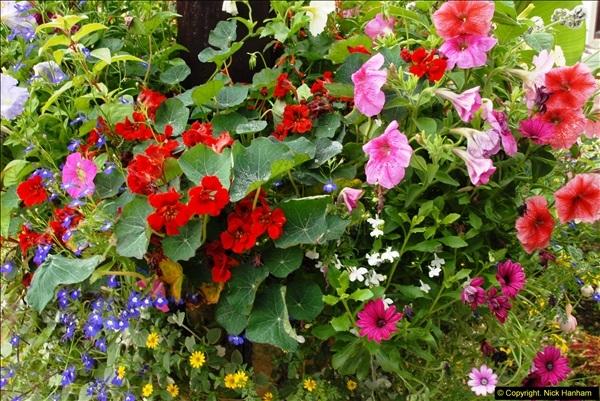 2015-07-15 Kingston Maurward Gardens & Animal Park, Dorchester, Dorset.  (9)009
