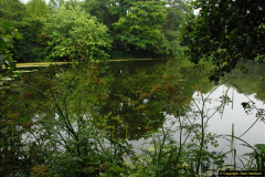2015-07-15 Kingston Maurward Gardens & Animal Park, Dorchester, Dorset.  (102)102